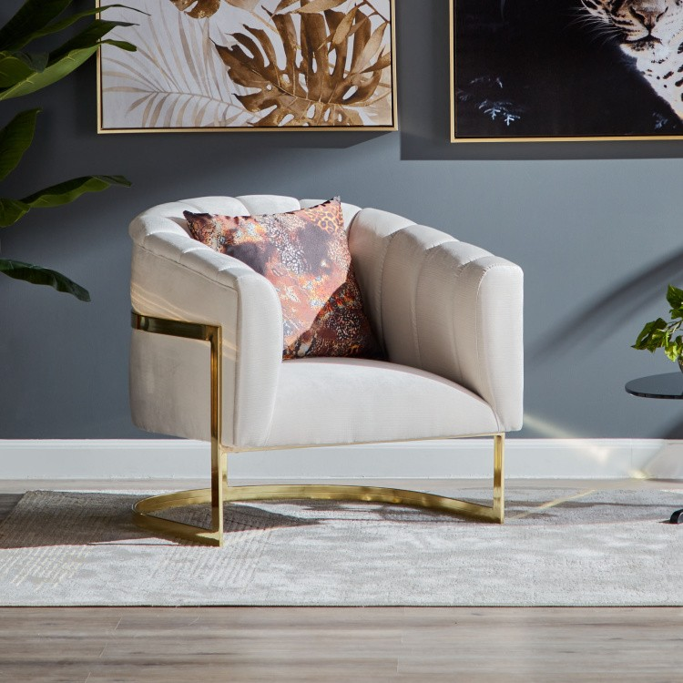 armchair- furniture offer
